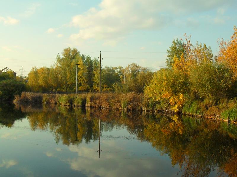 Фото к статье:             Осень