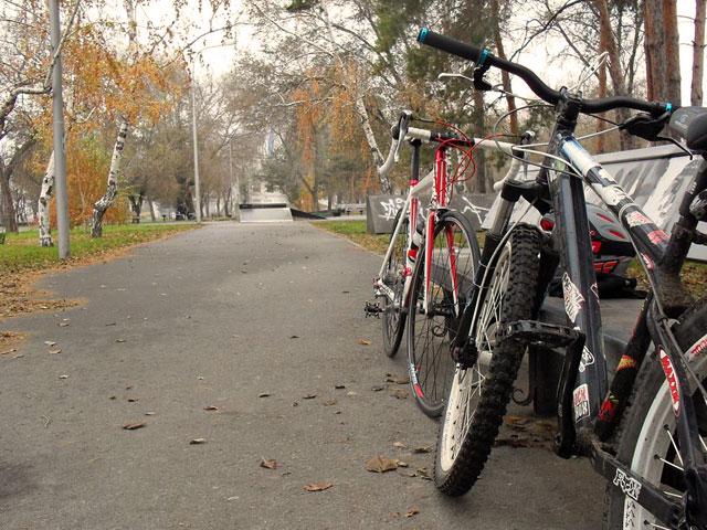 """Фото к             статье: Контрнаступление, забег за """"ЗОЖ"""" и немного позитива,             20.11.2011"""